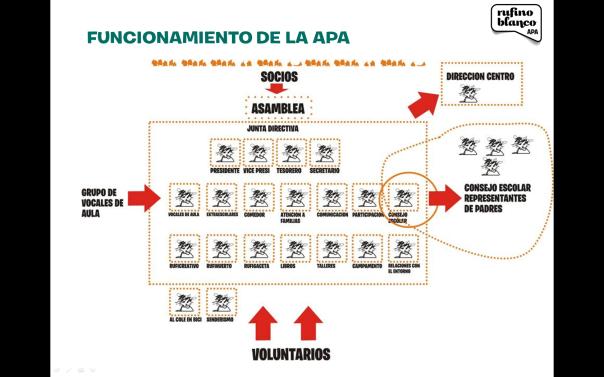Organigrama APA